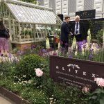 Alitex greenhouse – main avenue