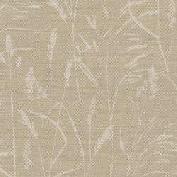 Meadow Grass Caramel