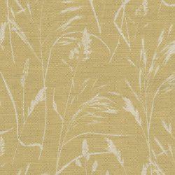 Meadow Grass Saffron