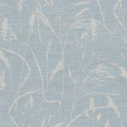 Meadow Grass Sky